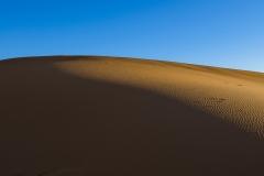 Sahara - Merzouga